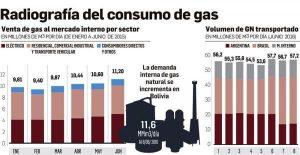 radiografia-de-consumo-de-gas